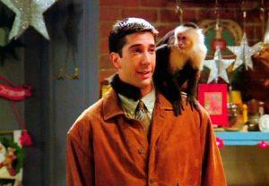 Ross és Marcel