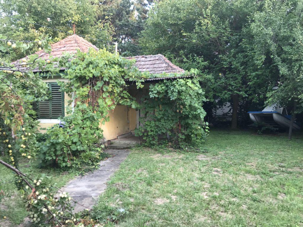 szőlős ház Balaton
