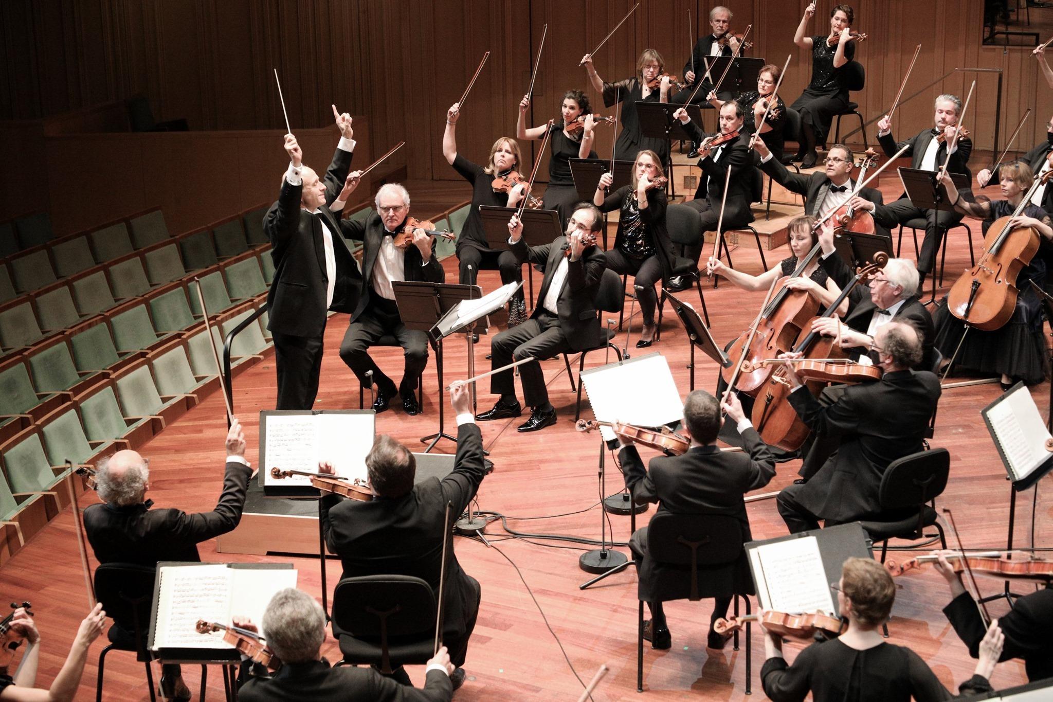 BFZ koncertek