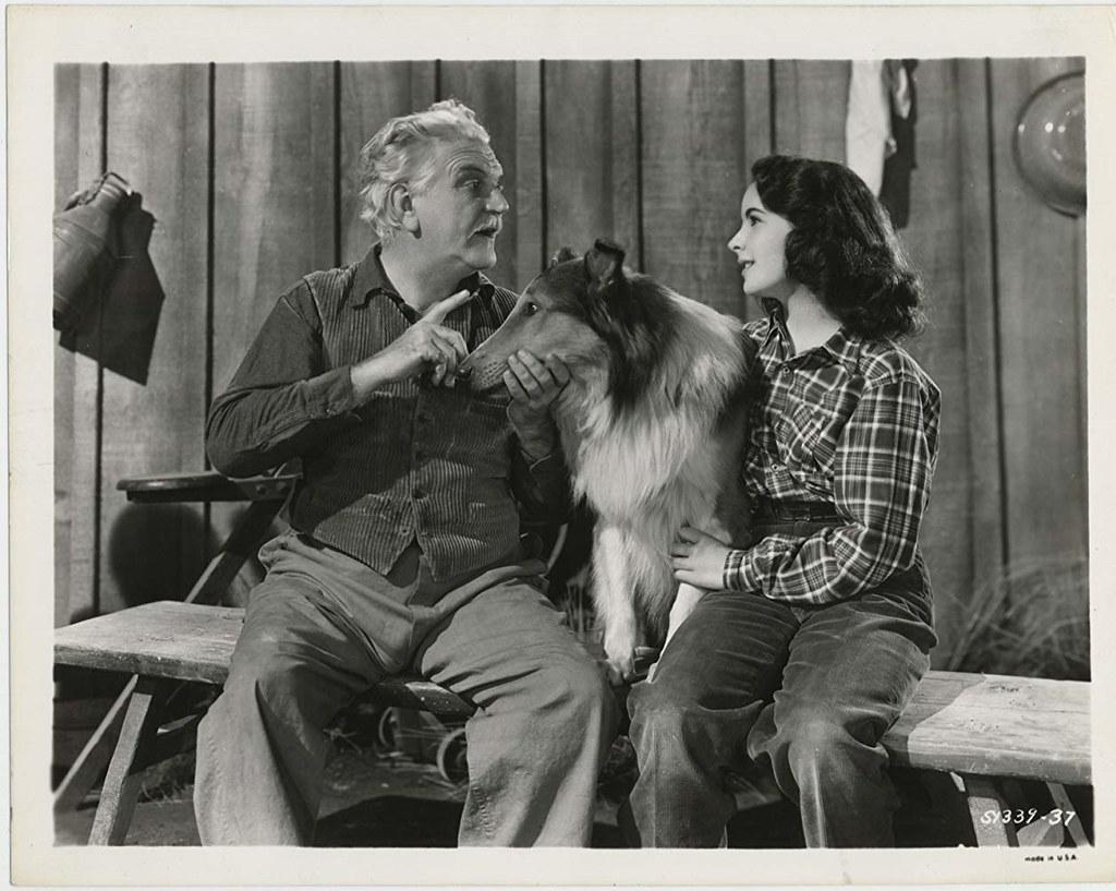 Elizabeth Taylor-Lassie