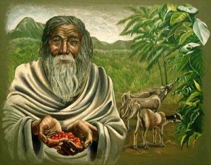 A legenda szerint Kaldi, az etióp kecskepásztor fedezte fel a kávét.