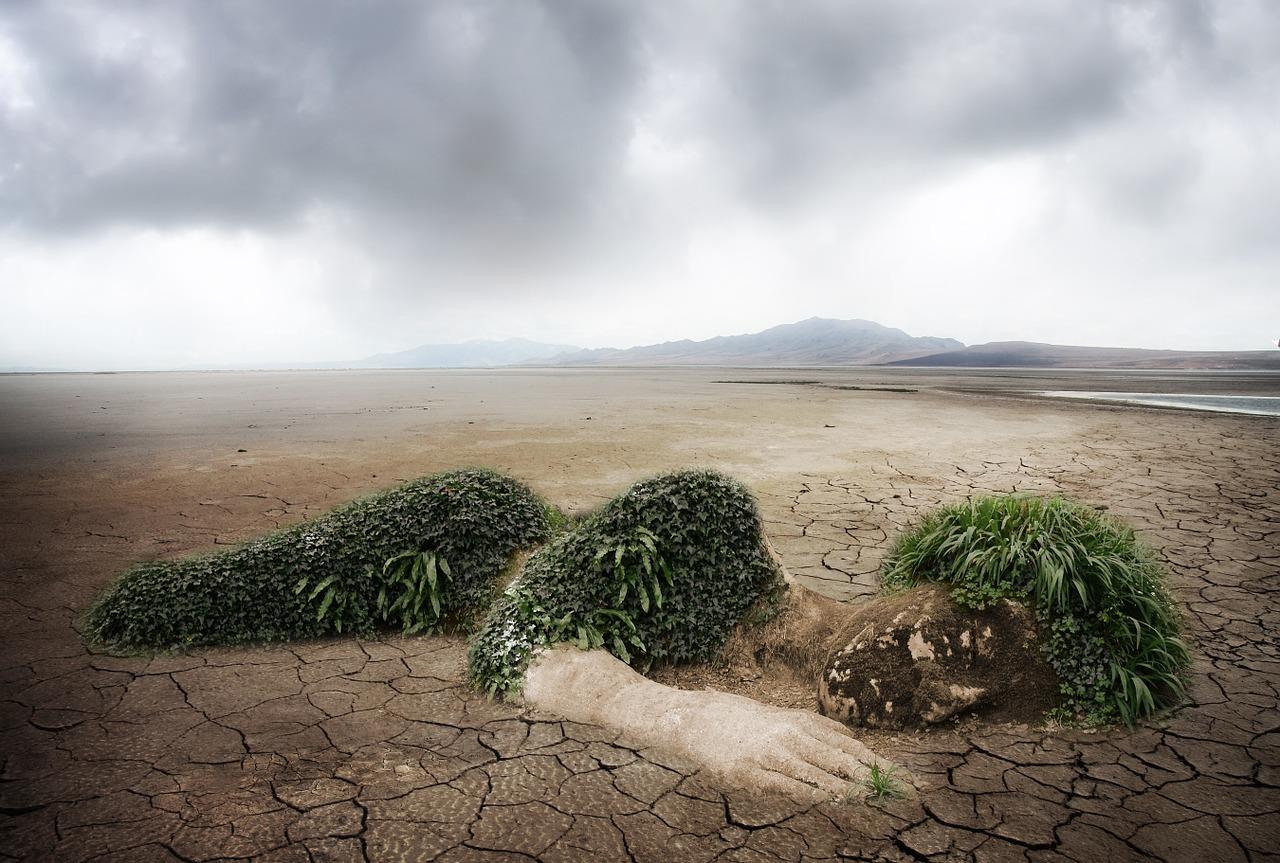 környezetvédelem, Föld
