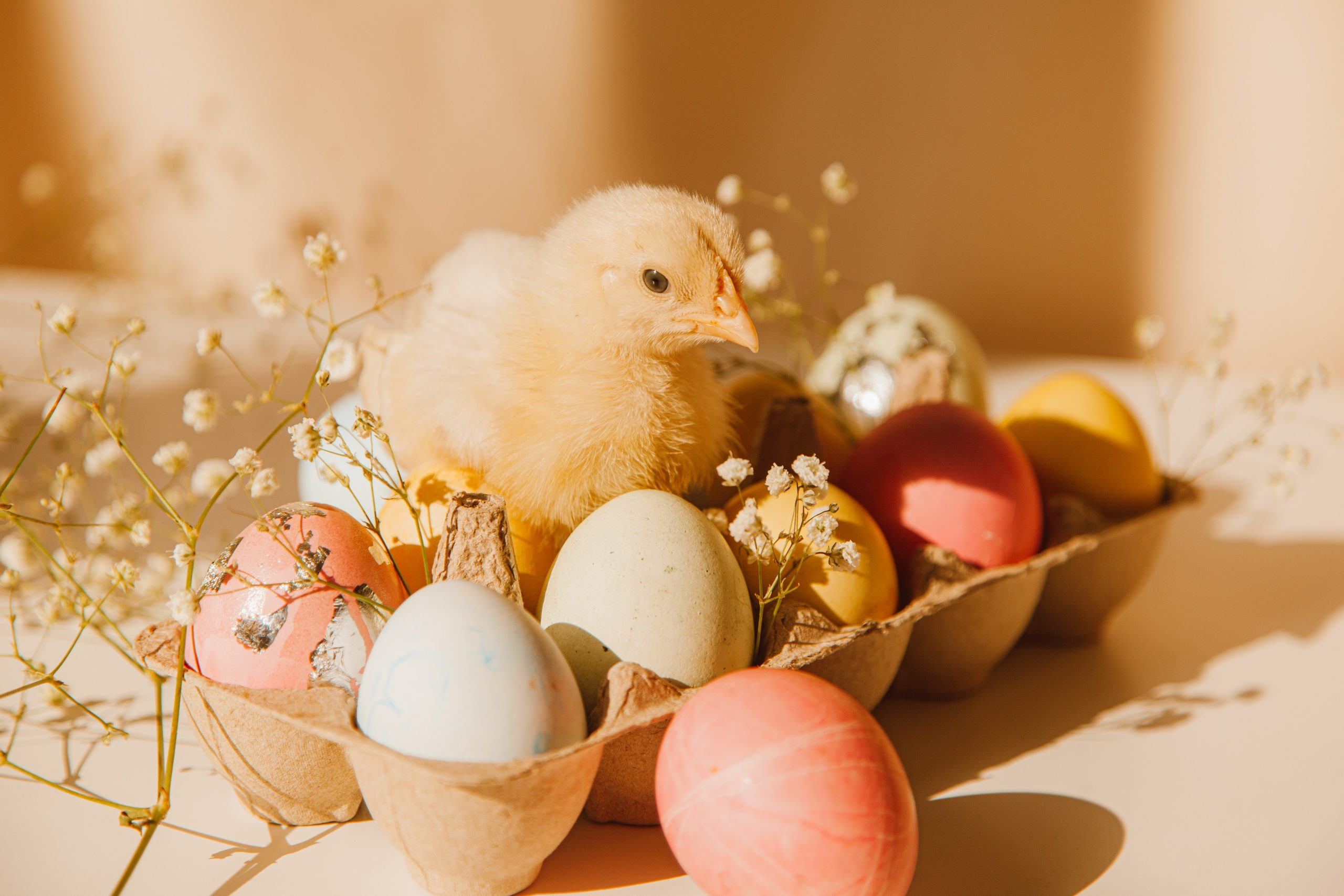 húsvét-tojás-tojásfestés