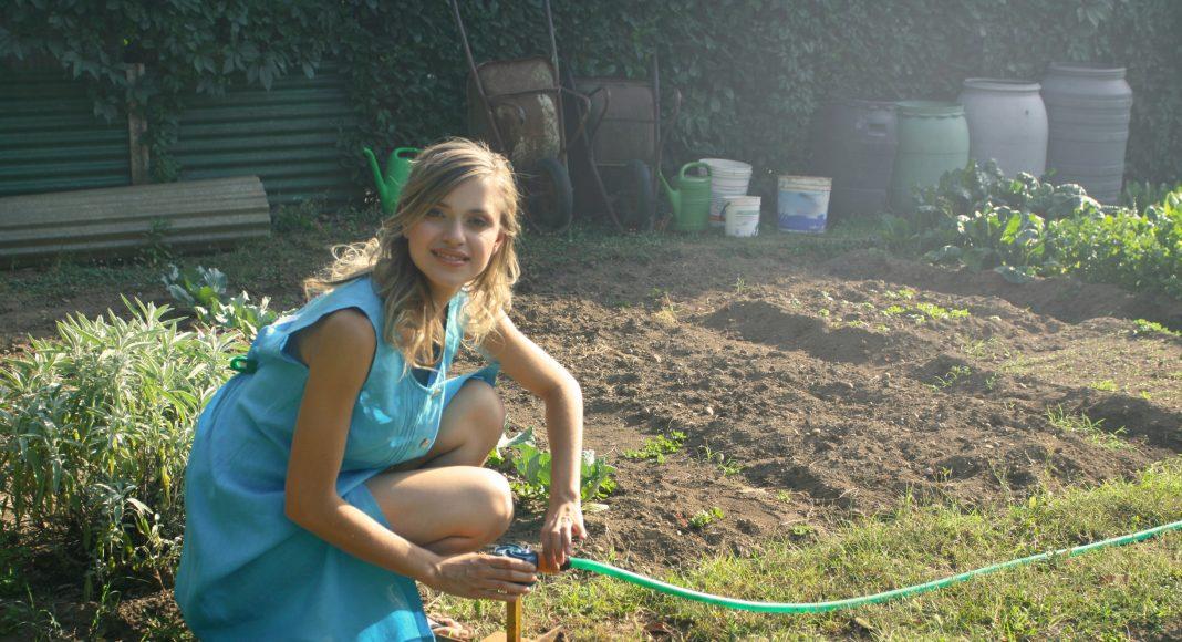 kertész-kert