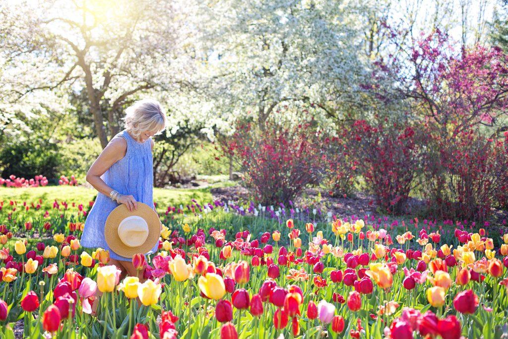 kert-tulipán