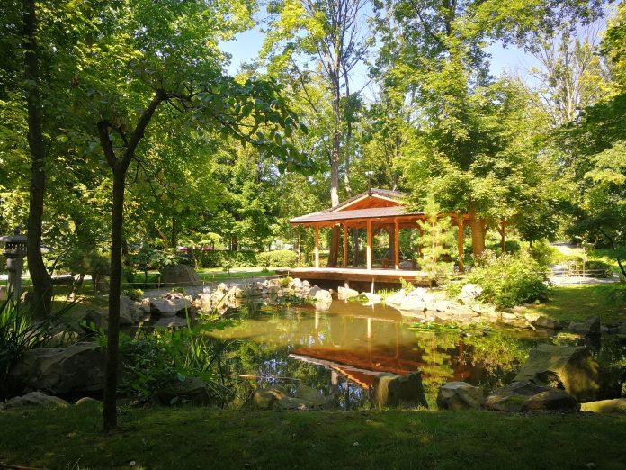 japánkert Szentendre