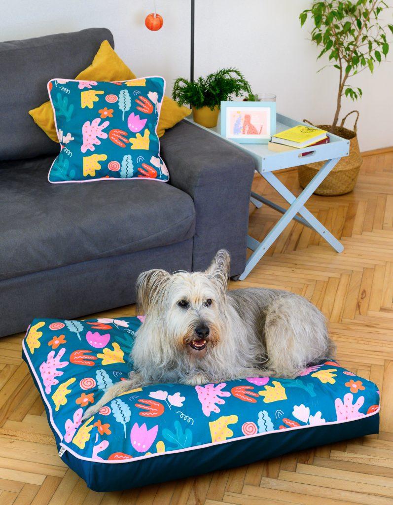 Happy Beast-kutyafekhely-kutya