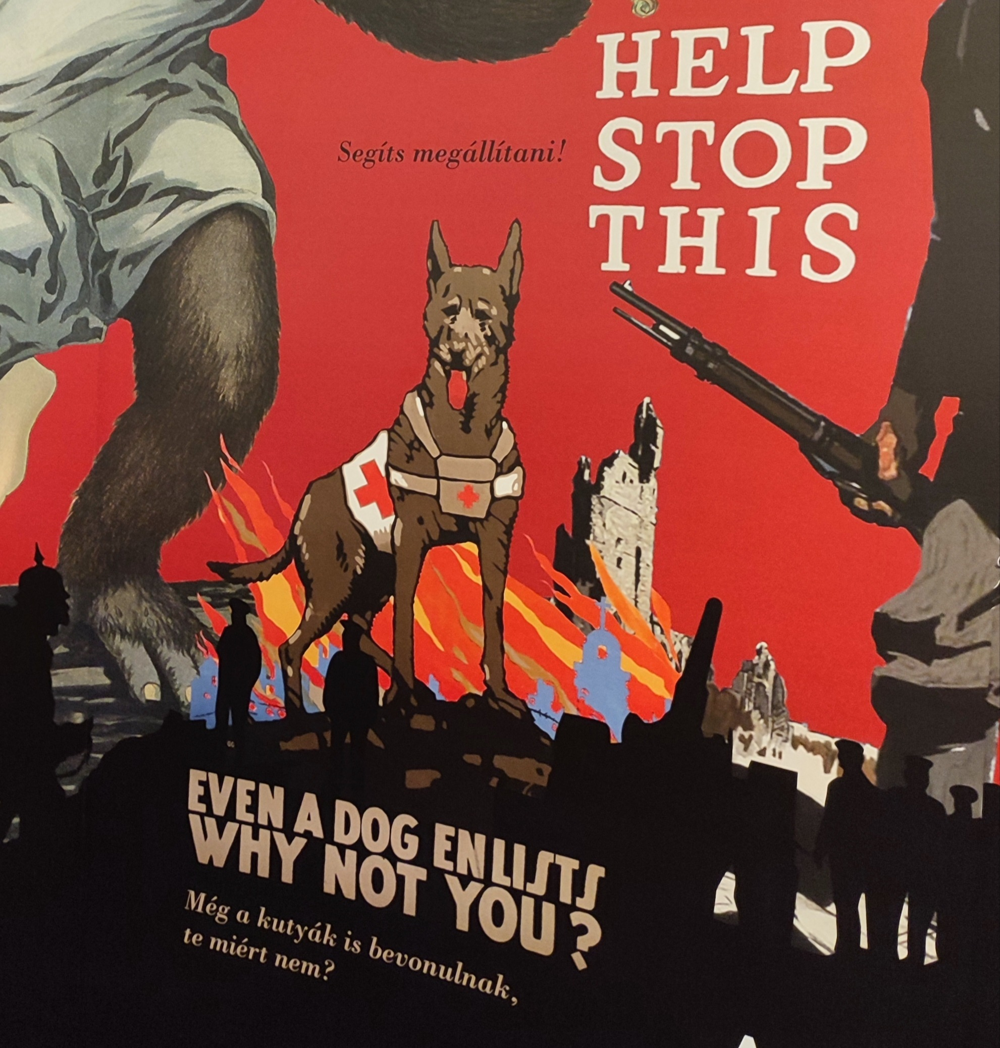 Kutyák az első világháborúban